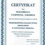 Certyfikat - analiza żywej kropli krwi