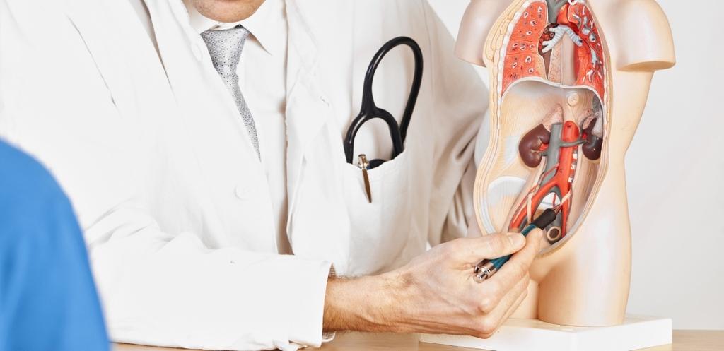 Urolog, leczenie chorób układu moczowo-płciowego w Centrum Medycznym Swiss Medicus